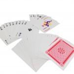 משחק קלפים ענק2